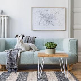 Scandi Style Interior Design, Online