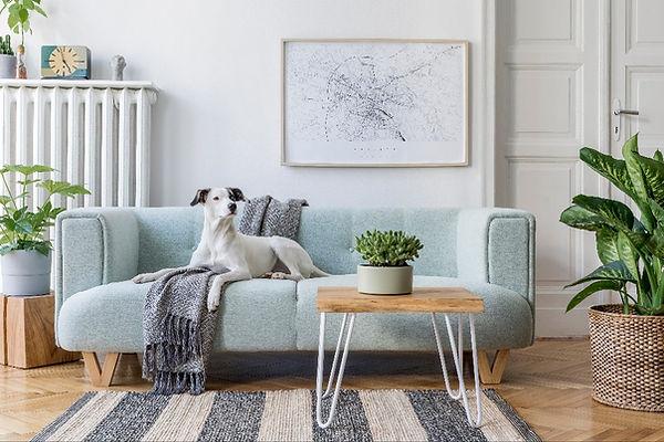 Interior Designer Cork Online