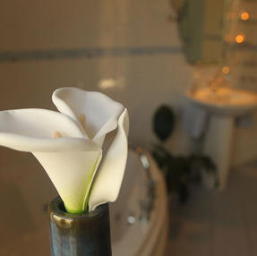 Bathroom Interior Design, Cork