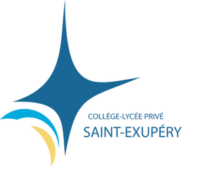 Logo STEX.png