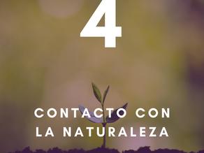 10 pilares para tu salud y bienestar: Cuarto pilar - Contacto con la naturaleza