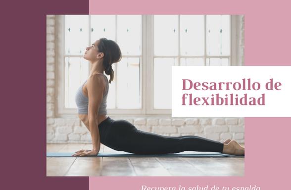 Desarrollo de flexibilidad