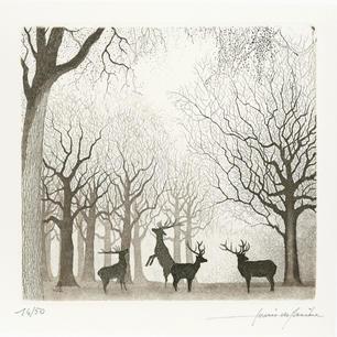 Cervi maschi nel bosco, 1997.jpg