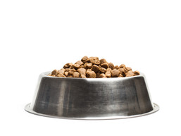 Dog Food from Plant Based Material