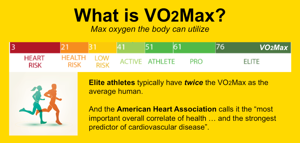 What is VO2Max?