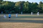 Cricket_270618_0661.jpg