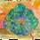 Thumbnail: A New Leaf