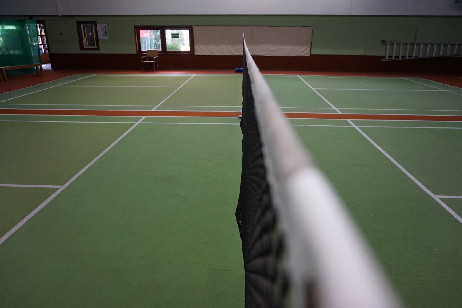 Badmintonnetz.JPG
