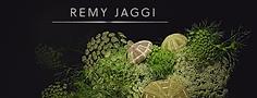 Jaggi_Rémi.png