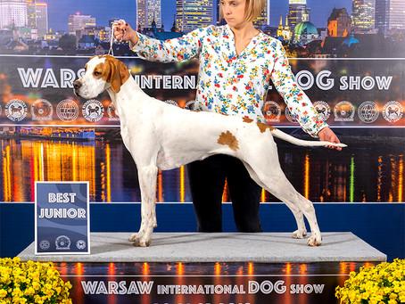 Marysia Najlepszym Juniorem na Międzynarodowej Wystawie w Warszawie