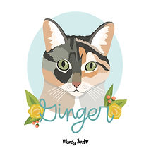 ginger cat square.jpg