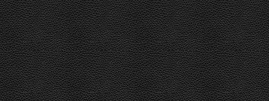 textura-couro-faixa-2.jpg