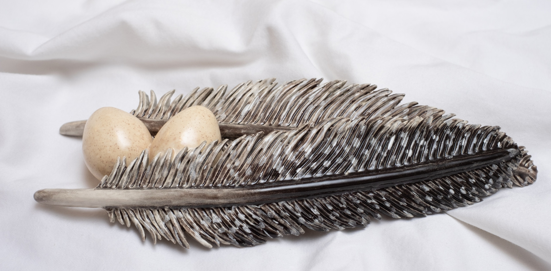 Guinea fowl feathers and eggs