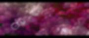 Screen Shot 2020-05-01 at 10.49.39.png