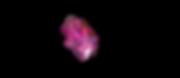 Screen Shot 2020-05-01 at 10.51.06.png