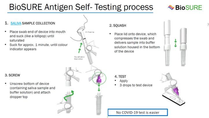 Self testing process.png