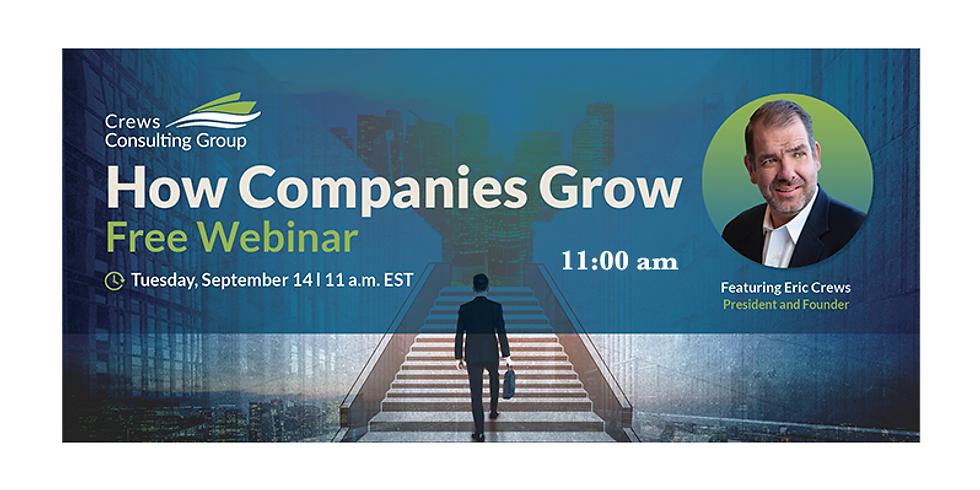 How Companies Grow