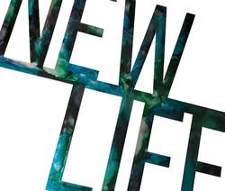 New Life Angle_Custom_MetalWork_SmallBus