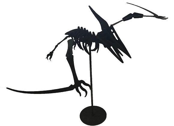 3D Dinosaurs - Pterodactyl