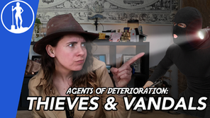 Agents of Deterioration: Thieves and Vandals