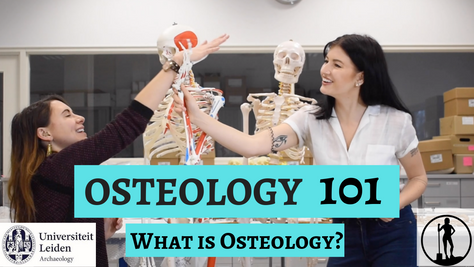 Osteology 101- Part 1/5: What is Osteology?