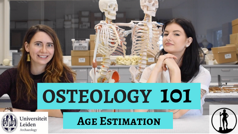 Osteology 101- Part 2/5: Age Estimation