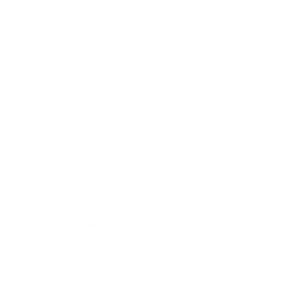 arcos blanco.png