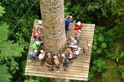 Canopy Zip Line