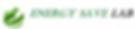 Лого ЕСЛ.png