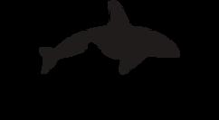 Косатка Медиа Лого новый.png