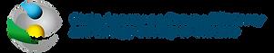 logo_saee_ukraine_en1.png