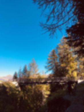 PHOTO-2019-10-15-12-17-23 2.jpg