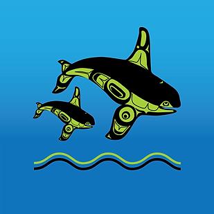 Illus-Orcas.png
