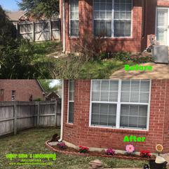Yard Clean up on Arlington, TX