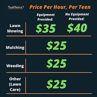 New TaskTeens Pricing Chart (1).png