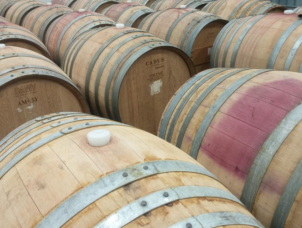 More & More Barrels.jpg
