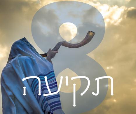 Day Eight - Tekiah