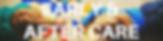 TSND Website button headers.png
