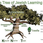 Tree of Life English.jpg