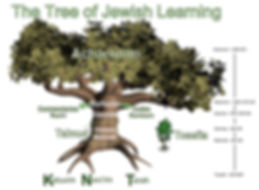 Tree of Life English.jpg