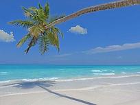 モルディブローカル島