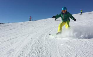 Snowboardles?