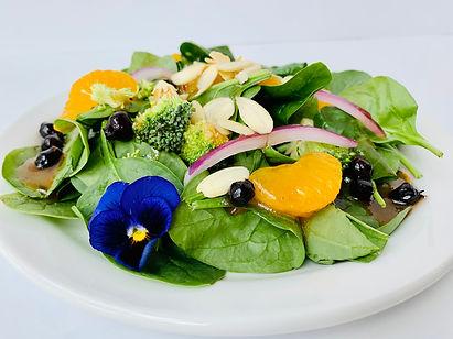 Spinach Saskatoon Salad.jpg