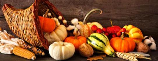 thanksgiving-cornucopia-filled-autumn-pu