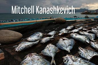Mitchell Kanashkevich_Marinated fish dry