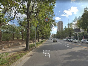 人と不動産と街路樹と大阪市