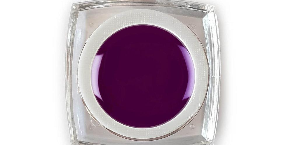 Azian Plum - Gel Color 5ml