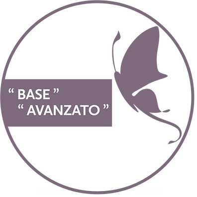 BASE AVANZATO.png