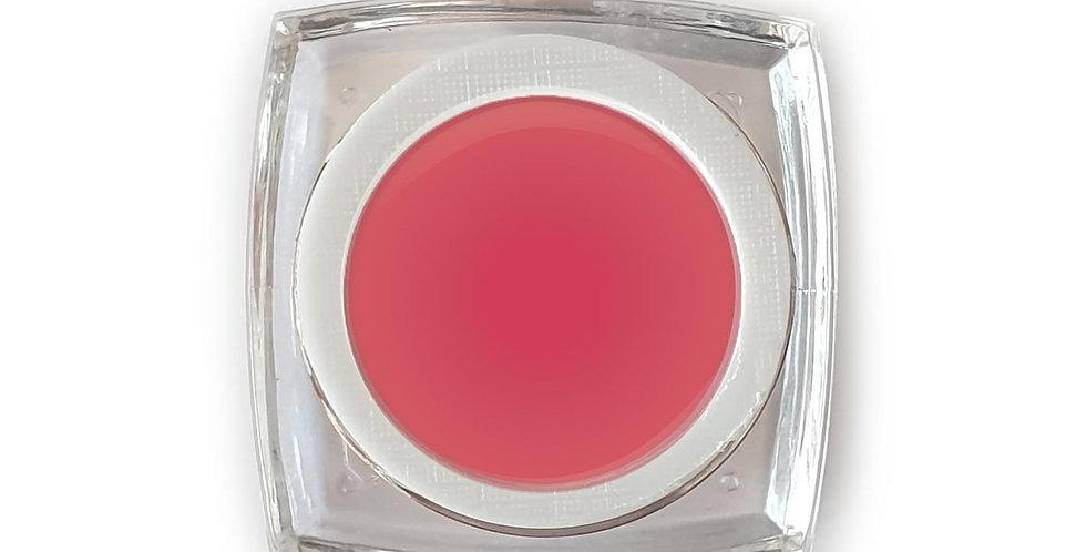 Paradox - Gel Color 5ml