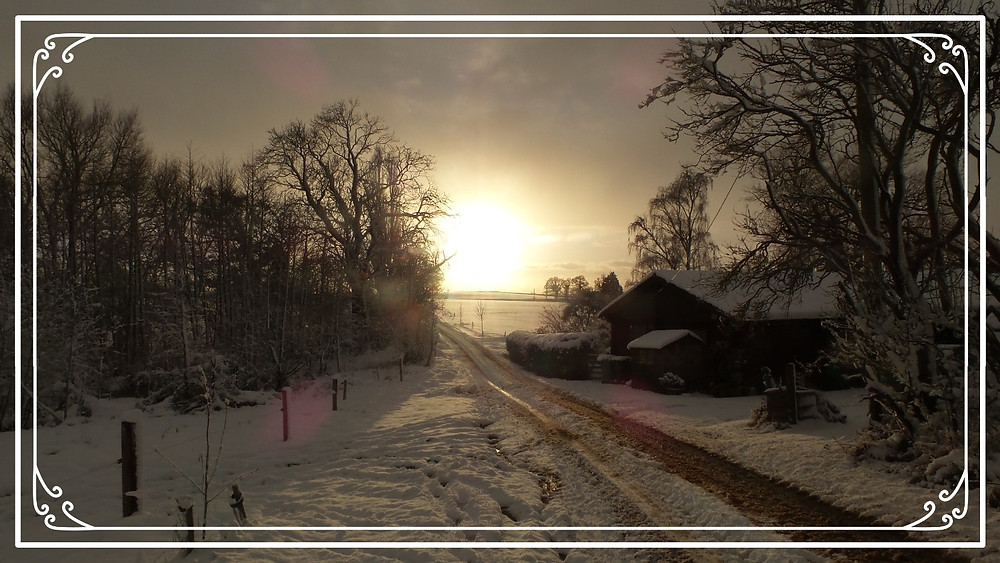 A snowy scene from Shropshire, England